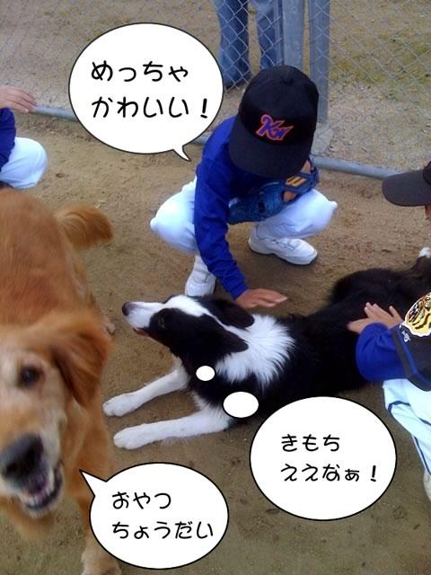 可愛がって〜!