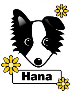 hana_ssize