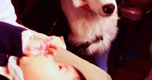 甥っ子に初お目見え。7ヶ月4ヶ月
