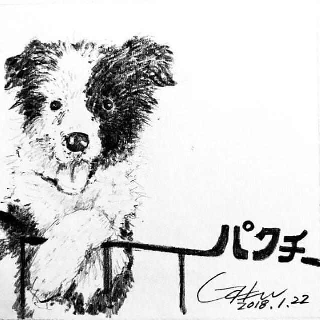 @tida0321 さんのお友達の @jijicoosun さんにパトンとパクチーのイラストを描いていただきました!ありがとうございます